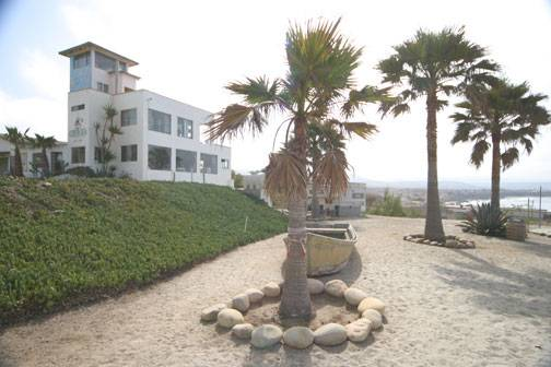 Coyote Cals Beach Resort, Ensenada Blanca, Mexico, Mexico hostels and hotels