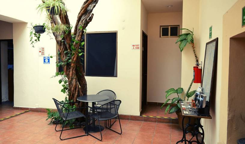 Hostel Don Nino - Search available rooms for hotel and hostel reservations in Oaxaca de Juarez 9 photos