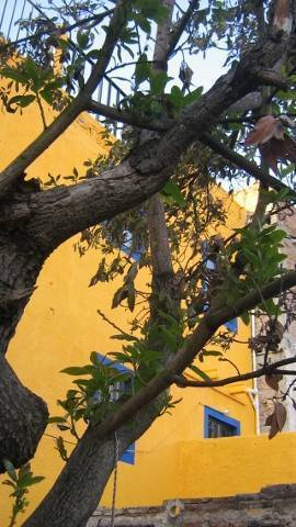 Hostel Mellado B and B, Guanajuato, Mexico, 10 best cities with the best hotels in Guanajuato