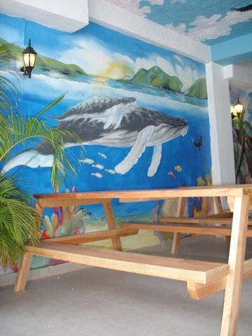 Vallarta Sun Hostel, Puerto Vallarta, Mexico, Niskie koszty zakwaterowania w Puerto Vallarta
