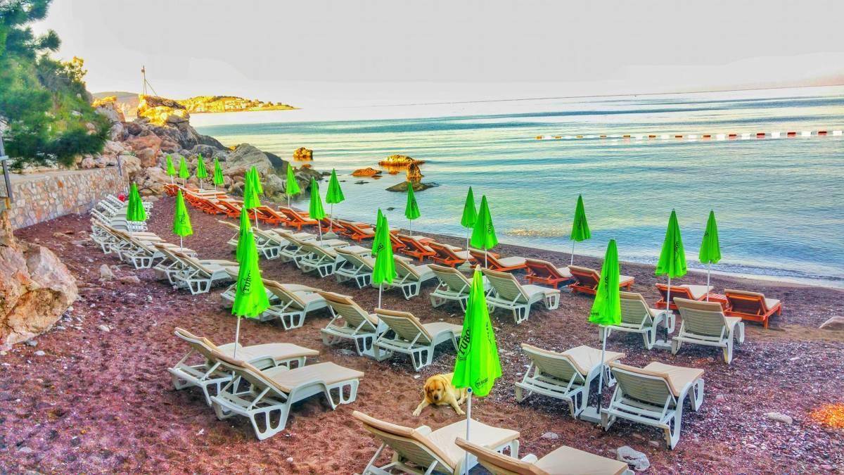 Apartments Castello - Red Beach, Bar, Montenegro, Montenegro 호텔 및 호스텔