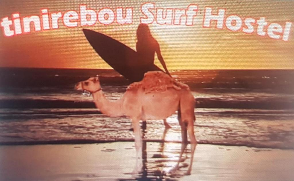 Tinirebou Surf Hostel, Aourir, Morocco, Morocco hotels and hostels