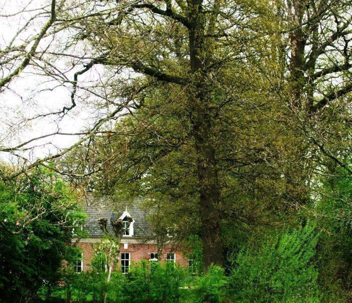 Landgoed de Lavei, Zenderen, Netherlands, Netherlands hotels and hostels