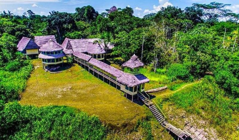 Amazon Jaguar Tour - Search available rooms for hotel and hostel reservations in Iquitos 34 photos
