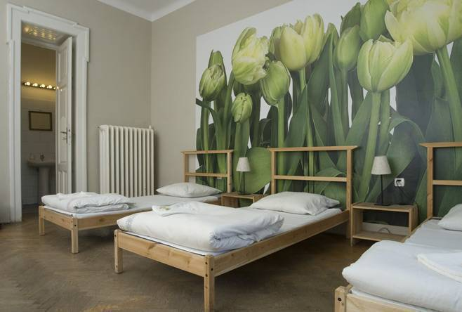 Lemon Hostel, Krakow, Poland, youth hostels with kitchens and microwave in Krakow