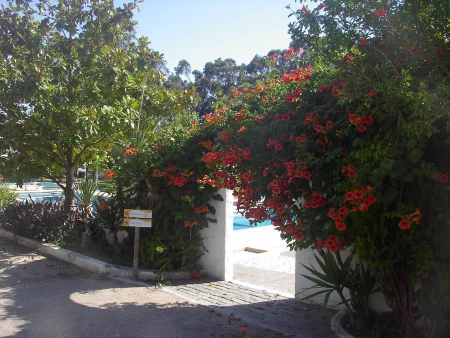 A Coutada - Hotel Rural, Peniche, Portugal, Modieuze, verfijnde, stijlvolle hotels in Peniche