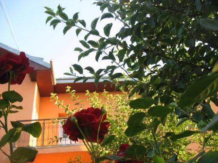Lary Hostel, Suceava, Romania, Romania hoteller og vandrehjem