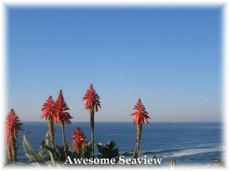 Blue Sky Mining Backpackers And Lodge, Durban, South Africa, South Africa hotels and hostels