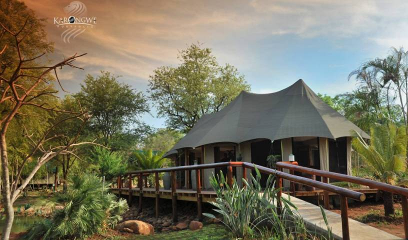Chisomo Safari Camp - Search for free rooms and guaranteed low rates in Hoedspruit 89 photos