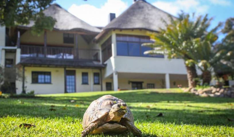 Winelands Villa Guesthouse and Cottages - Search available rooms for hotel and hostel reservations in Somerset West, ZA 10 photos