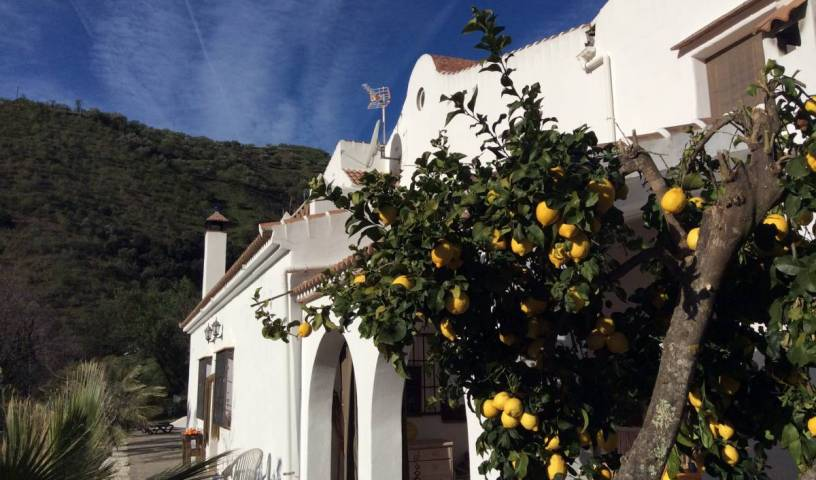 The House Of Oranges - Search available rooms for hotel and hostel reservations in Sedella 13 photos