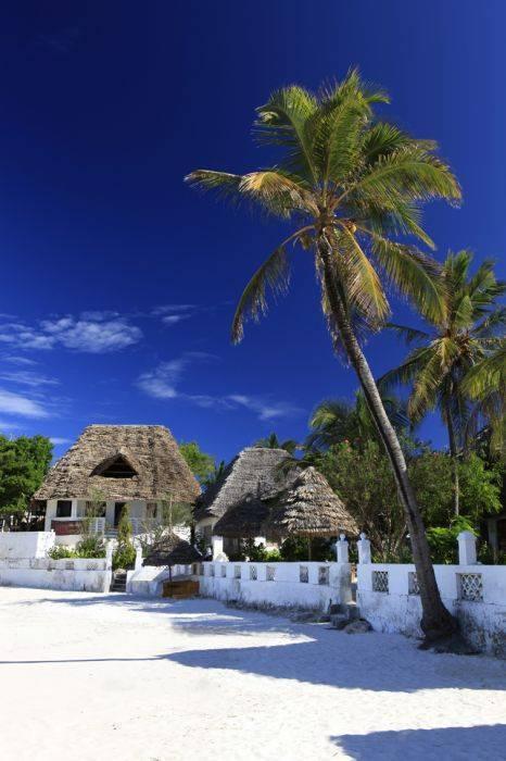 Red Monkey Lodge, Jambiani, Tanzania, Tanzania отели и хостелы