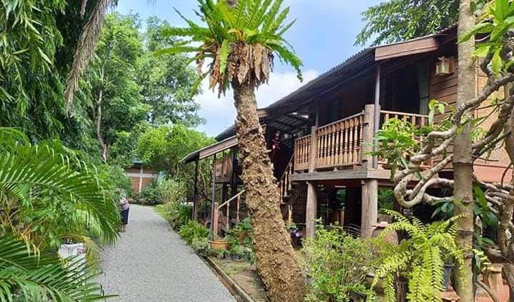 3 Sparrows House Bedandbreakfast - Get low hotel rates and check availability in Chiang Mai 2 photos