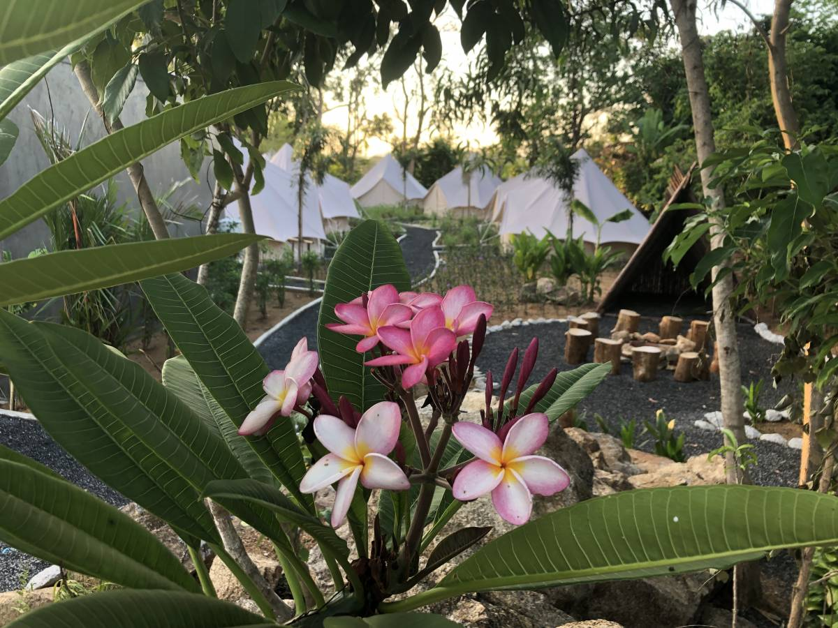 Roost Glamping, Phuket, Thailand, hotels for vacationing in winter in Phuket