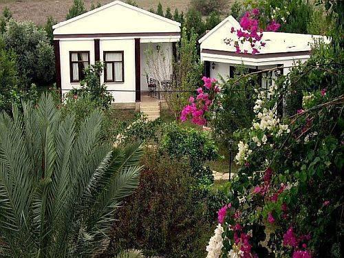 Anatolia Resort, Cirali, Turkey, Turkey hotels and hostels