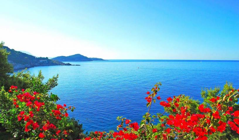 Gozdedenizhotel - Search available rooms for hotel and hostel reservations in Bodrum 24 photos