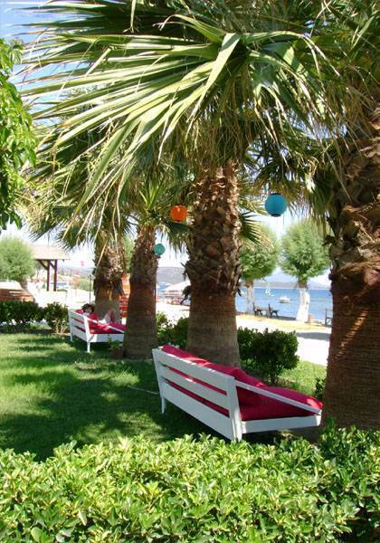 Yilmaz Hotel, Bodrum, Turkey, highly recommended travel booking site in Bodrum