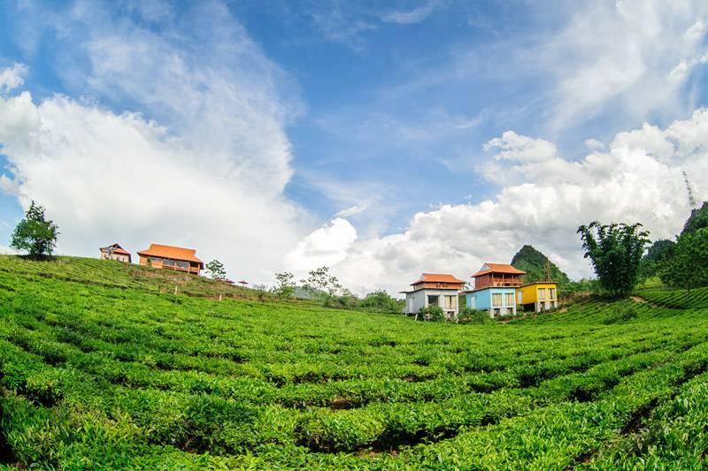 Mocchau Arena Village, Moc Chau, Viet Nam, Viet Nam hostels and hotels