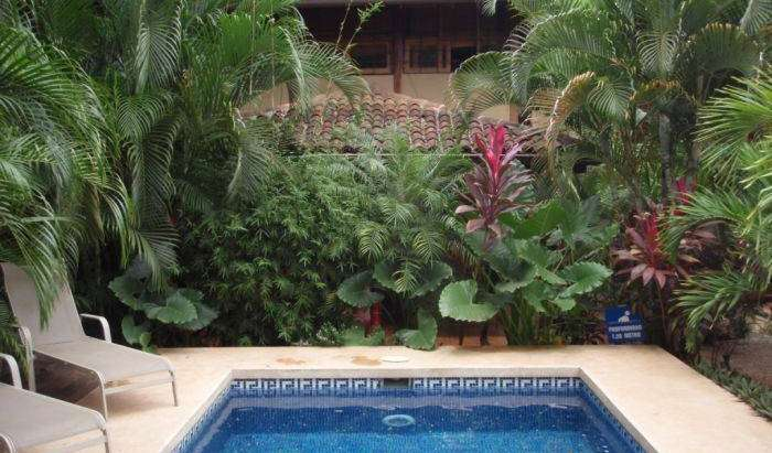 Cheap hotel and hostel rates & availability in Tamarindo